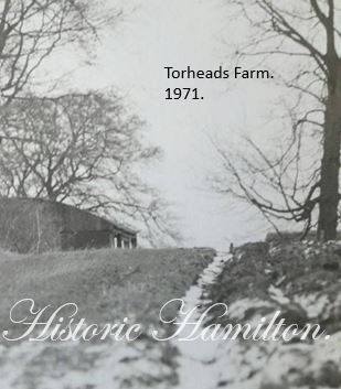Torheads Farm 1971.1.JPG