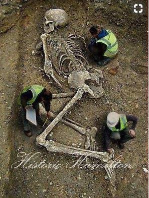 Hamilton Skeleton.